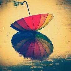 雨⋆̩☂︎*̣̩のユーザーアイコン