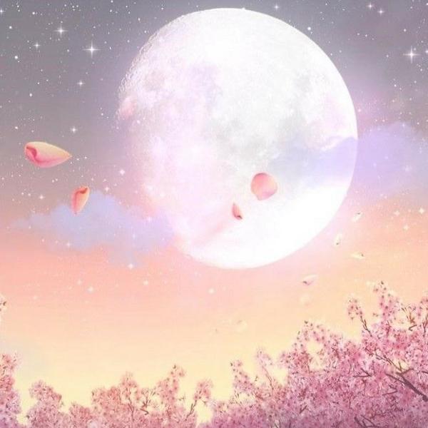 strawberry moon  ☪︎*。꙳のユーザーアイコン