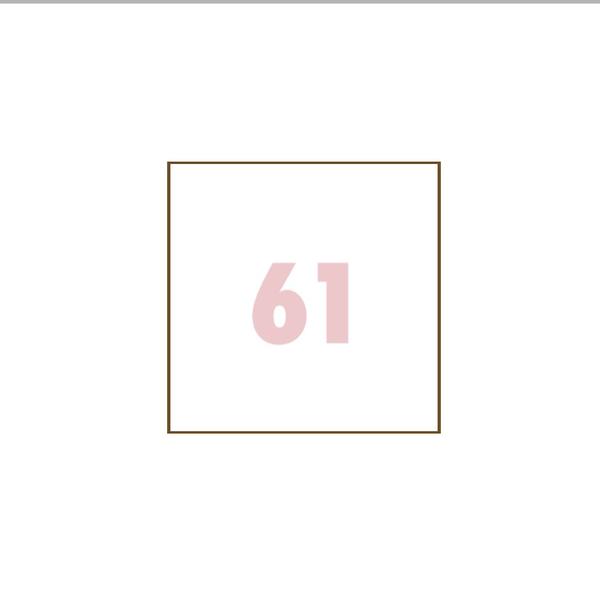 ( 61 )のユーザーアイコン