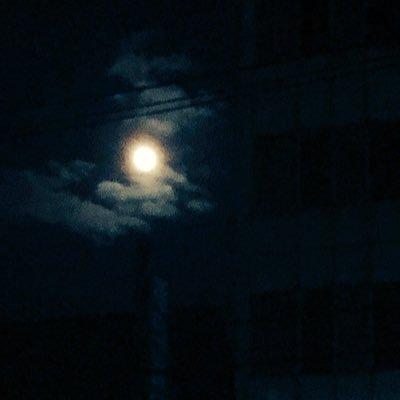 紫月和泉のユーザーアイコン