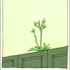 そこら辺の雑草のユーザーアイコン