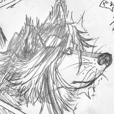 玉獣狐ことひづねぼーんのユーザーアイコン