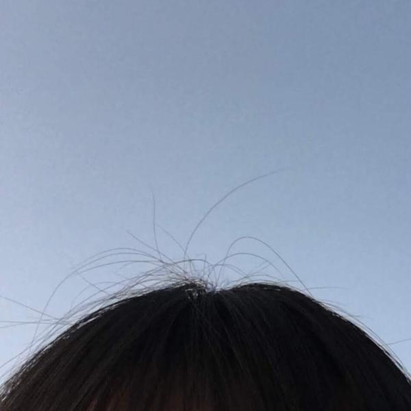 阿保毛のユーザーアイコン