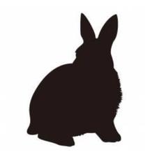 LV×RABBITSのユーザーアイコン
