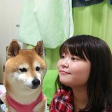 fumikaのユーザーアイコン
