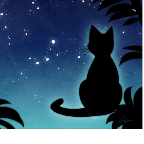 莉夜のユーザーアイコン