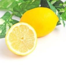 lemonのユーザーアイコン
