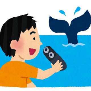 鯨のユーザーアイコン