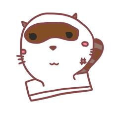 raccoon dogのユーザーアイコン