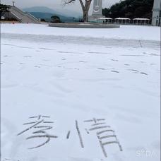橋波和花奈のユーザーアイコン