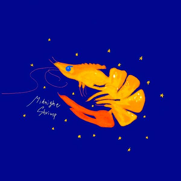 midnight shrimpのユーザーアイコン