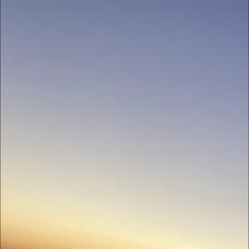 シチ's user icon