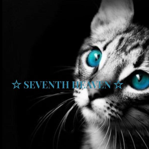 ☆ SEVENTH HEAVEN ☆  (๑- -๑) . z Zのユーザーアイコン
