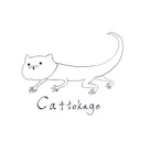 猫蜥蜴のユーザーアイコン