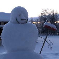 ニセ雪だるまのユーザーアイコン