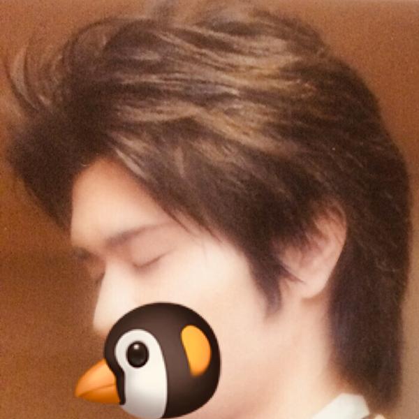 ペンギン丸    ✨[深い森]✨のユーザーアイコン