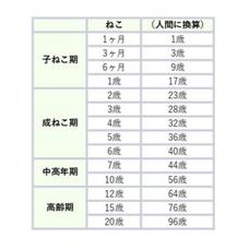 松永は秋競馬観戦で多忙's user icon