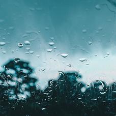 青雨のユーザーアイコン
