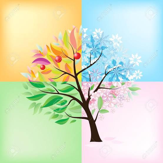 four seasons【公式】のユーザーアイコン