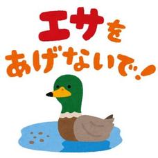 鴨志田のユーザーアイコン