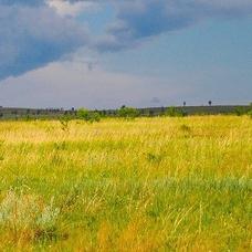 浮雲 大草原のユーザーアイコン