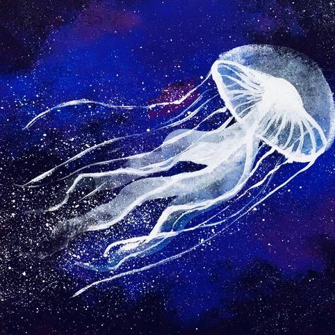 jellyfish's user icon