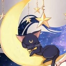 ゆき猫🐾新垢のユーザーアイコン