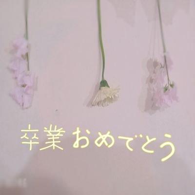 咲谷 綾菜のユーザーアイコン