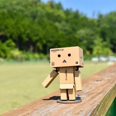 Pina子のユーザーアイコン