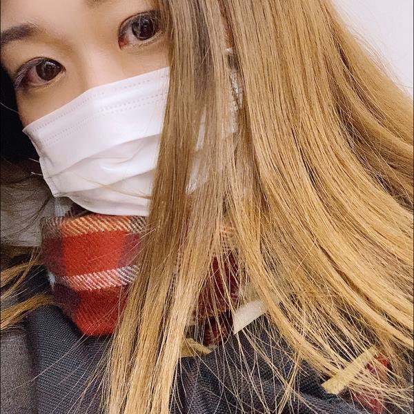 佐々木しぐ's user icon
