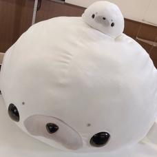 のーちゃんのユーザーアイコン