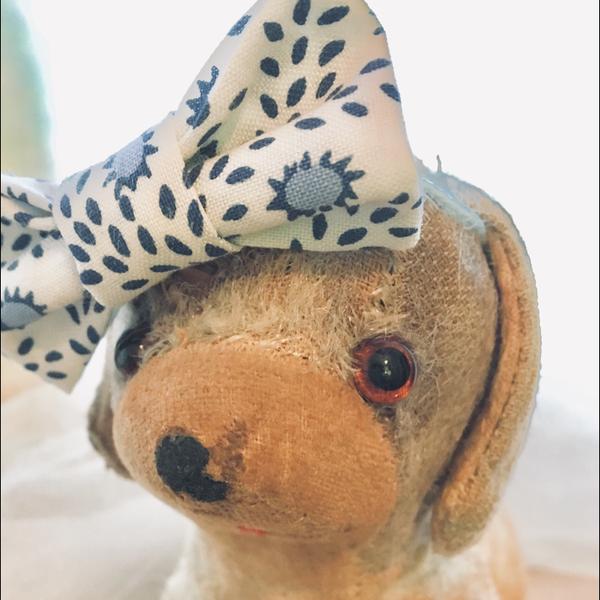 maxima (旧:プリティかませ犬)のユーザーアイコン