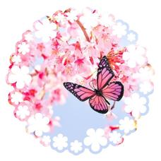 莉桜🍓🌸のユーザーアイコン
