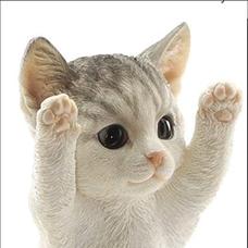 猫又‼️って呼んでね‼️のユーザーアイコン