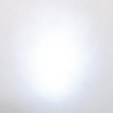 ✨🐷豚勝桜(㌧カツお)🐟✨アカ停止のユーザーアイコン