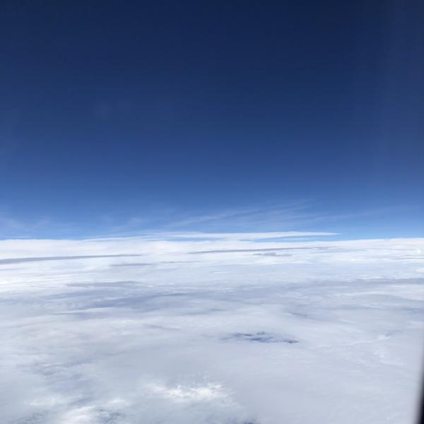 きゃみぶー🐥雲の上は晴れれれっ☀️のユーザーアイコン