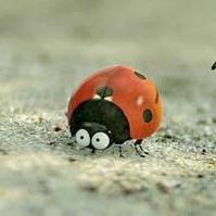 蟻あんと@のユーザーアイコン