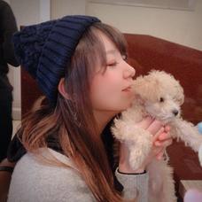 SYURIのユーザーアイコン