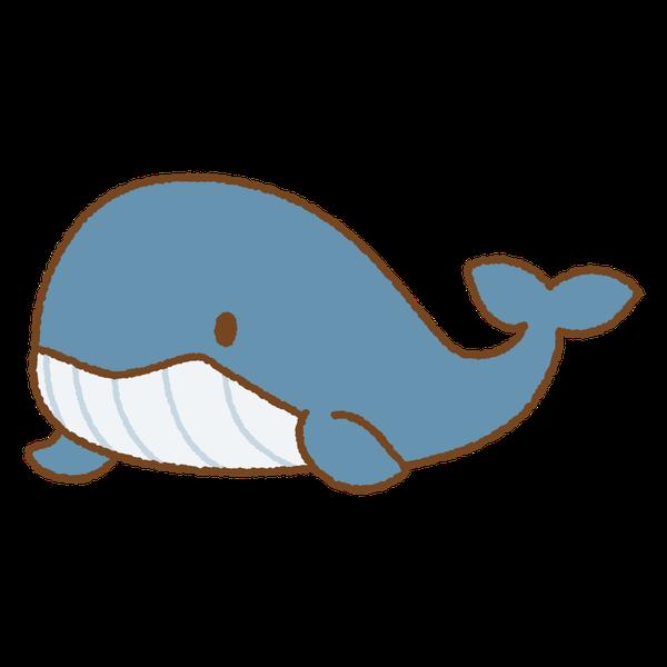 クジラちゃん🐳's user icon