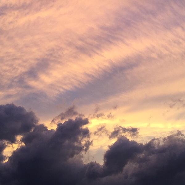 紫雲/siunのユーザーアイコン
