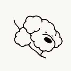 i's user icon