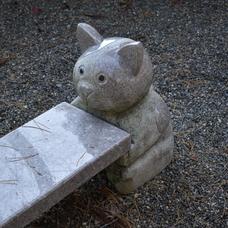 猫のベンチのユーザーアイコン