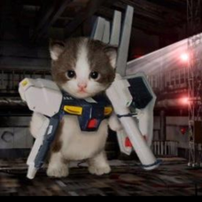 機動猫戦士ニャンダムのユーザーアイコン