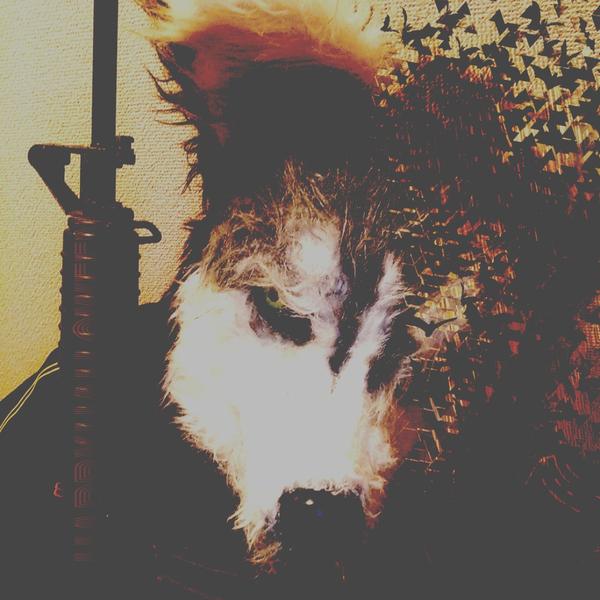 嗤う狼のユーザーアイコン