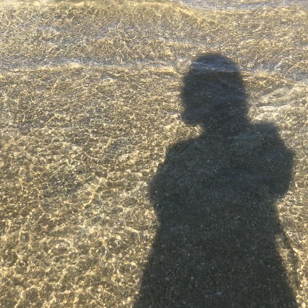 Seaのユーザーアイコン