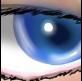 素朴ニーア's user icon