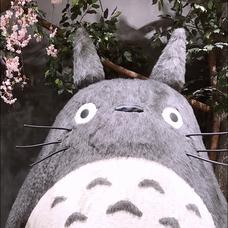 梅岡琉生のユーザーアイコン