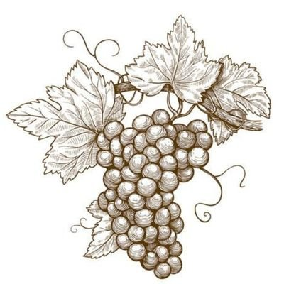 葡萄。のユーザーアイコン
