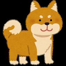 柴山いぬ's user icon