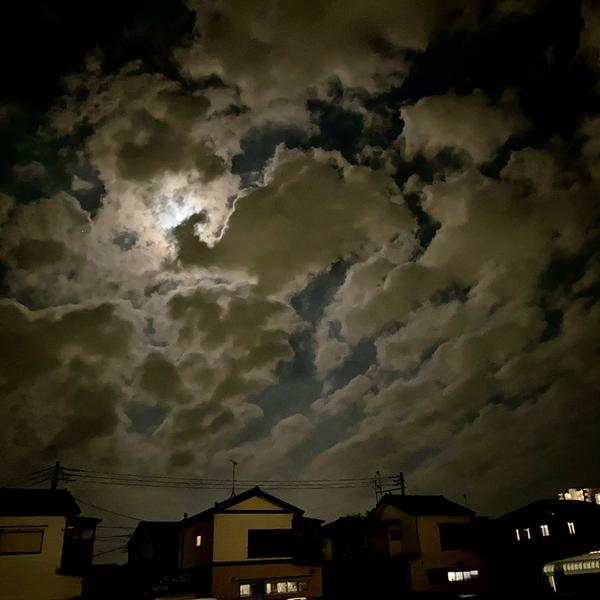 麒麟。のユーザーアイコン
